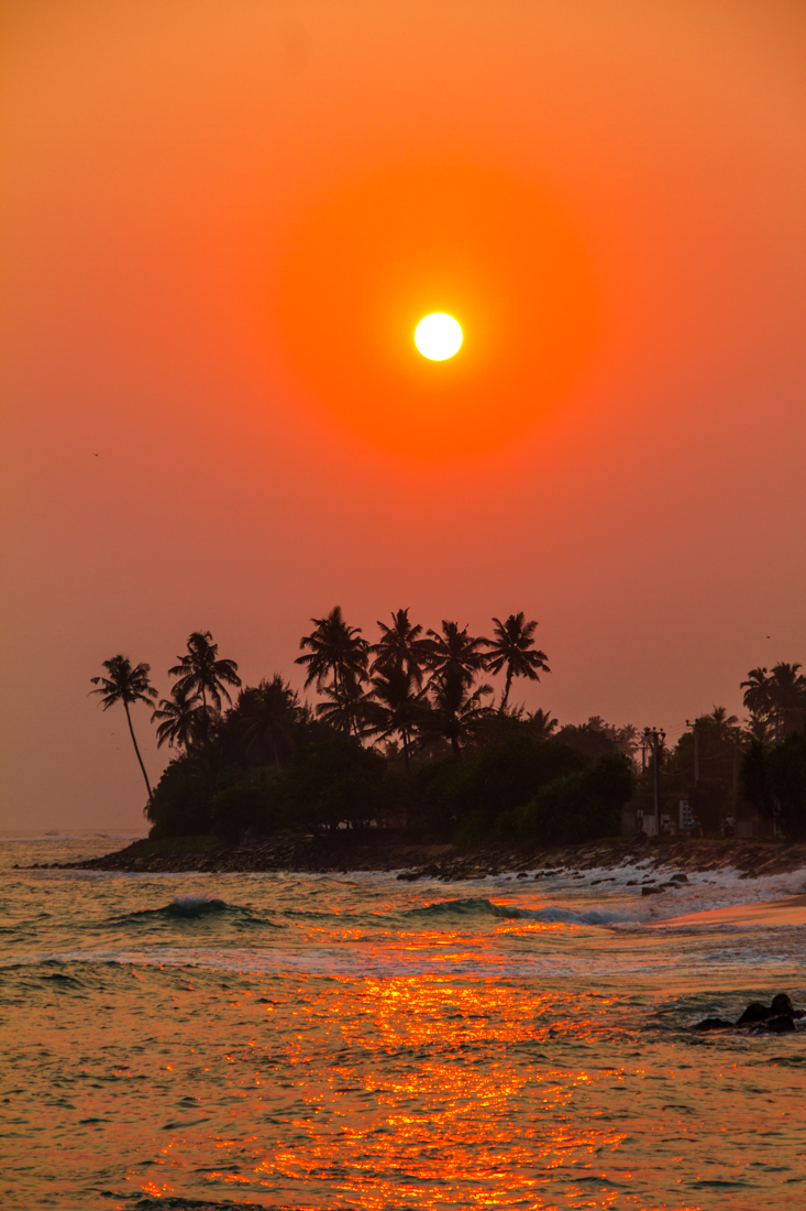 the-sidewalk-secrets-travel-blog-surf-sri-lanka-midigama-mirissa-surfing-sunset-8
