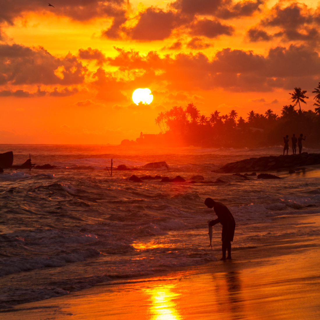 the-sidewalk-secrets-travel-blog-surf-sri-lanka-midigama-mirissa-surfing-sunset-5