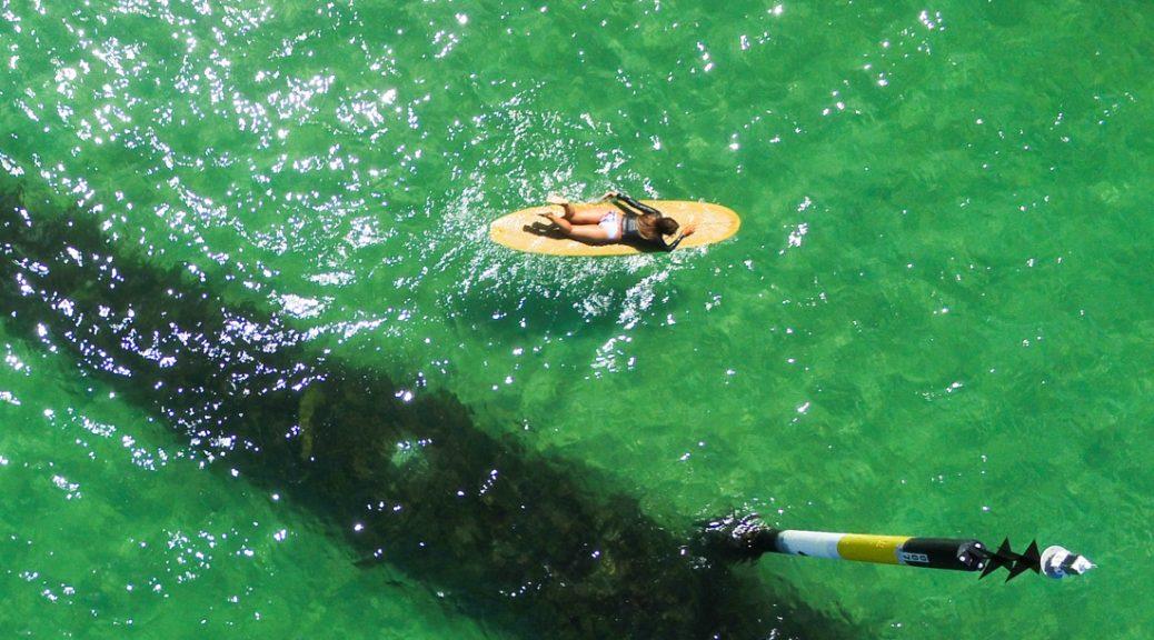 sidewalk-secrets-surf-yoga-blog-love-cronulla-1-3
